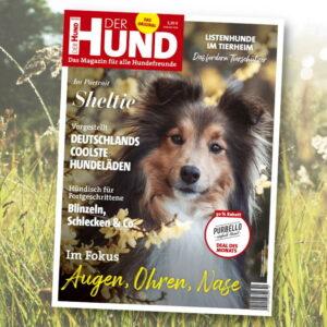 Vom Cover der September-Ausgabe schaut die Betrachter ein Sheltie an