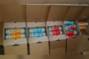Die verpackten Purbello HundeRollen im geöffneten Karton