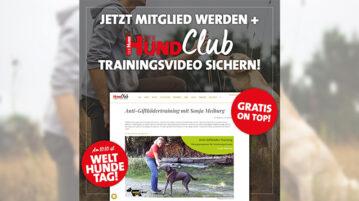 Video zum Anti-Giftködertraining als Willkommensprämie zum Welthundetag